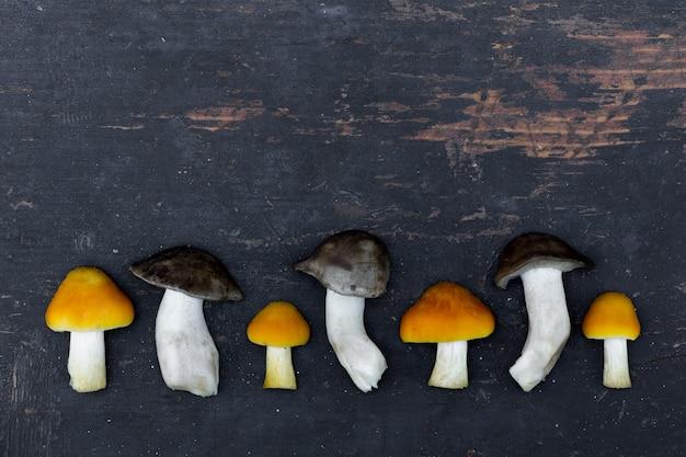 Świeże grzyby leśne w starej czarnej drewnianej desce wyłożonej z rzędu. z miejscem na tekst