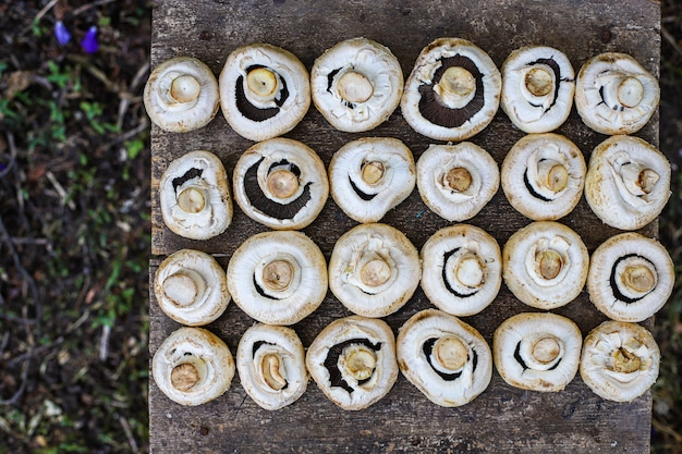 Świeże grzyby pieczarki zbierają żywność