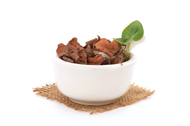 Świeże i suszone houttuynia cordata lub plu kaow liście na białym tle.