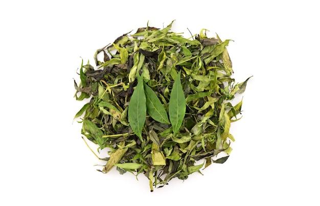 Świeże i suszone liście andrographis paniculata lub kariyat na białym tle. widok z góry, świeckich falt.