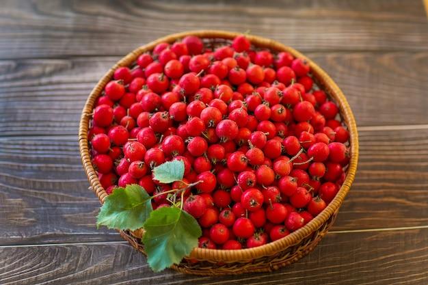 Świeże jagody głogu w koszu