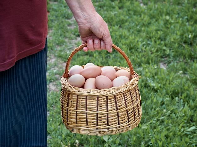 Świeże jaja kurze.