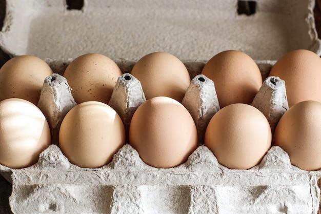 Świeże jajka w kartonie
