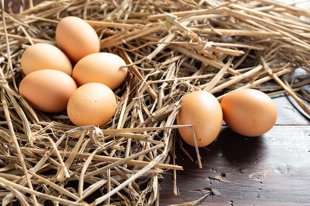 Świeże jajko z kurczaka.