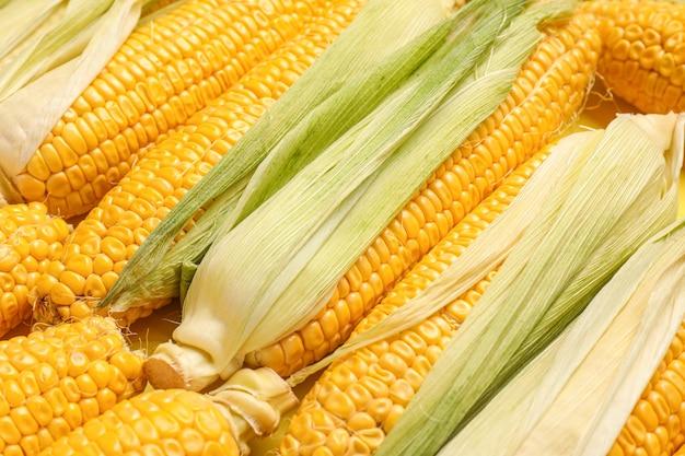 Świeże kolby kukurydzy jako tło