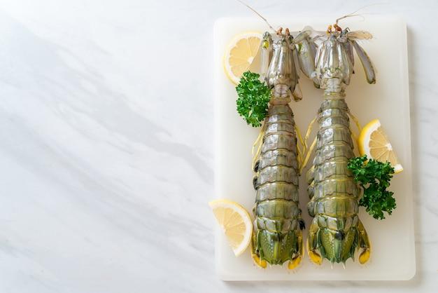 Świeże krewetki modliszkowe z cytryną na pokładzie