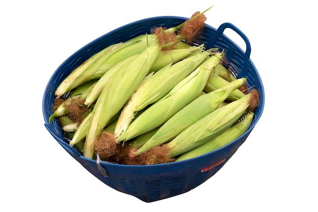 Świeże kukurydziane w koszu na białym tle