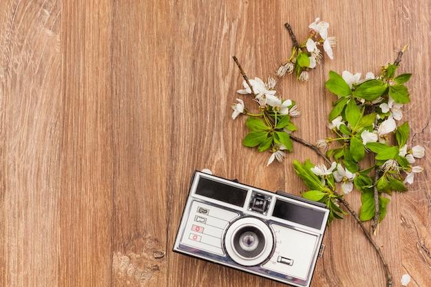 Świeże kwiaty i aparat fotograficzny