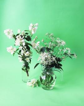 Świeże kwiaty jaśminu w wazonach na jasnym tle