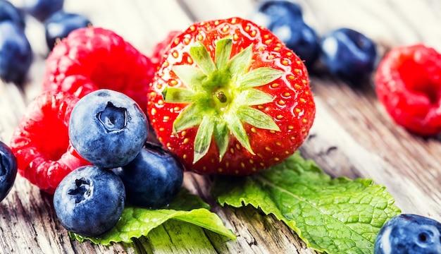 Świeże letnie owoce: pyszna truskawka, urocze maliny z jagodami ułożone na aromatycznej zielonej miętie.