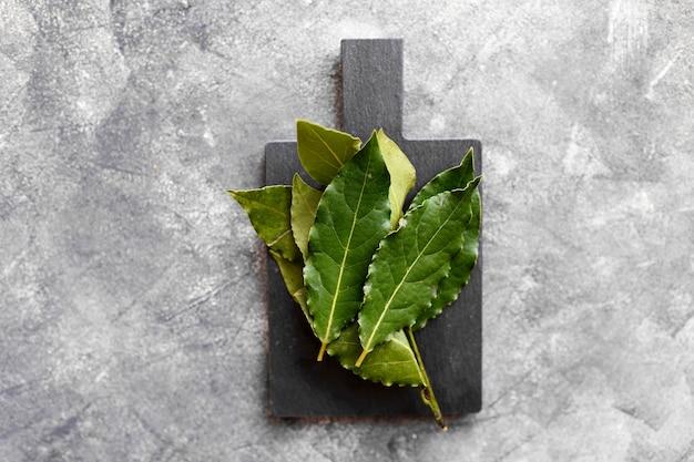 Świeże liście laurowe na ciemnoszarym tle. zioła.