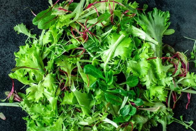 Świeże liście sałaty wymieszać mikro zielenie keto lub paleo