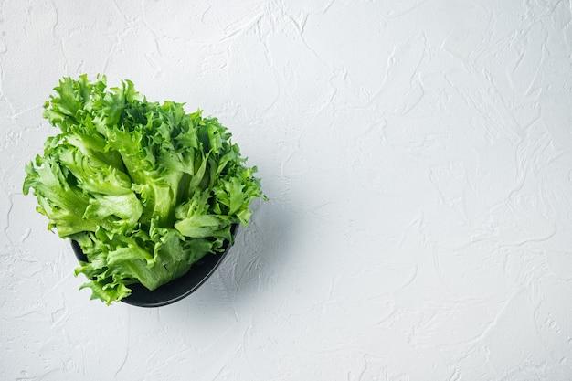 Świeże liście zielonej świeżej sałaty, na białym tle, widok z góry płasko leżał z miejscem na kopię tekstu