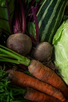 Świeże marchewki, buraki, cukinia i kapusta w koszu. nowe zbiory warzyw sezonowych. witaminy i zdrowie z natury. zbliżenie. pionowy.