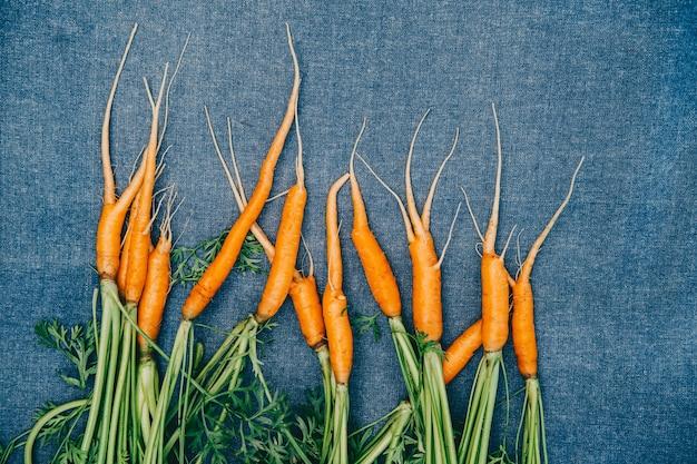Świeże marchewki z ogrodu. mała marchewka na niebieskim tle. zbiory marchwi.