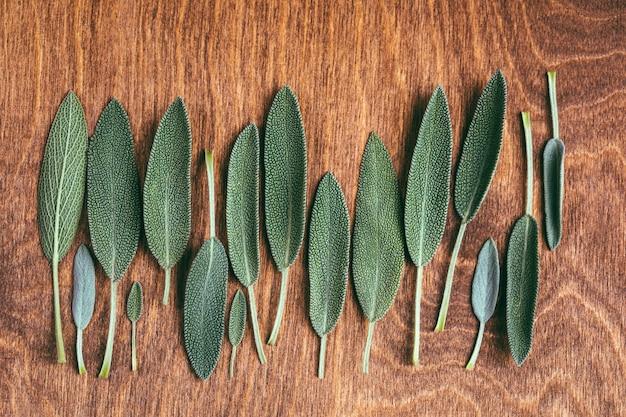 Świeże młode liście szałwii na drewnianym tle