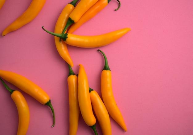 Świeże naturalne żywe żółte chilli płaskie leżało na różowym tle piękny pikantny składnik