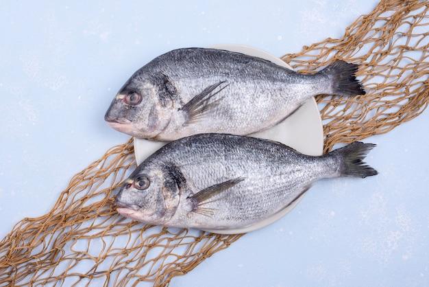 Świeże, niegotowane ryby z owoców morza z siecią rybną