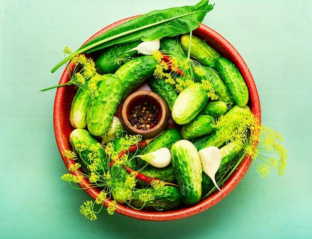 Świeże ogórki i składniki do gotowania ogórków kiszonych