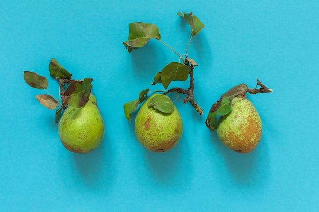 Świeże organiczne zielone gruszki z liśćmi w środku na niebieskim tle