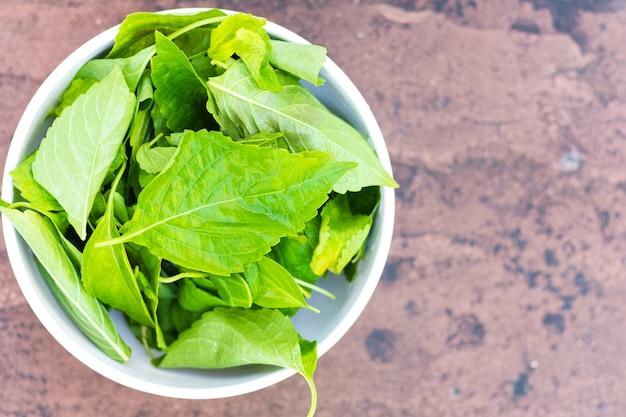 Świeże organiczne zioła zielone liście roślin w białej misce
