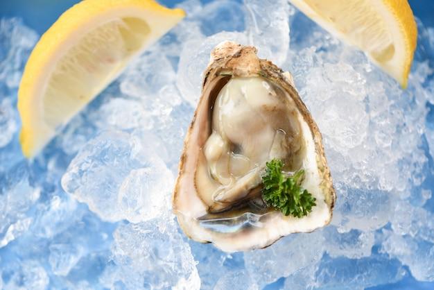 Świeże ostrygi owoce morza na lodzie. otwarta ostrygowa skorupa z przyprawami ziołowymi, cytrynową natką pietruszki i zdrowym owocem morza surowa ostrygowa kolacja w restauracji dla smakoszy