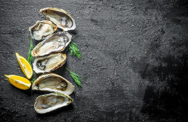 Świeże ostrygi z plasterkami cytryny i koperkiem. na czarnym rustykalnym
