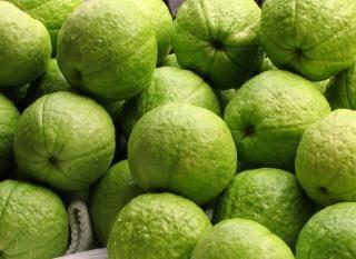 Świeże owoce guawy