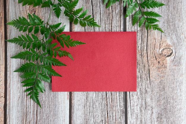 Świeże paprocie z lasu deszczowego i czerwona koperta