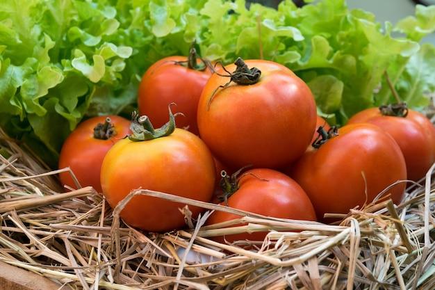 Świeże pomidory i warzywa hydroponiczne w drewnianej skrzyni