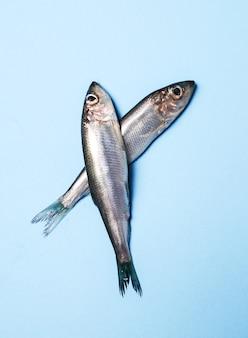 Świeże pyszne ryby na niebiesko