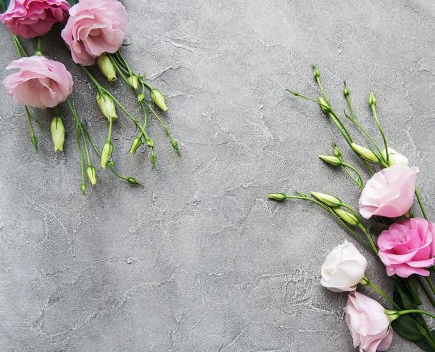Świeże różowe kwiaty eustoma