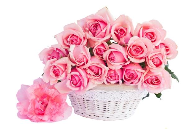 Świeże różowe kwitnące róże w koszu na białym tle