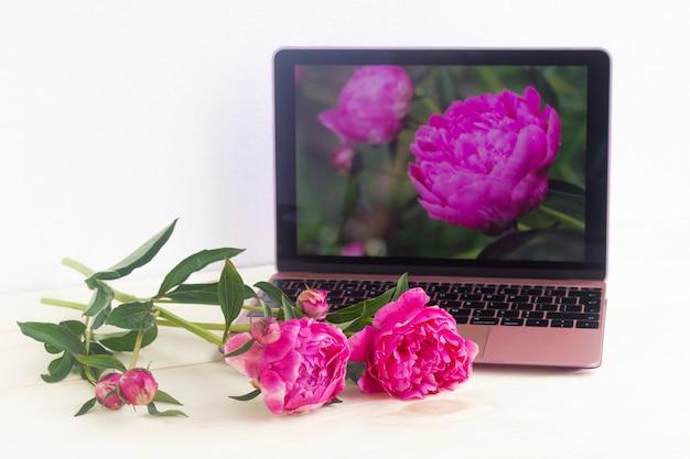 Świeże różowe piwonie na pulpicie i zdjęcie tych kwiatów na ekranie laptopa.