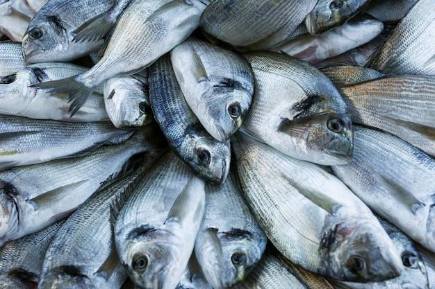 Świeże ryby ładnie ułożone na blacie. poranny połów.