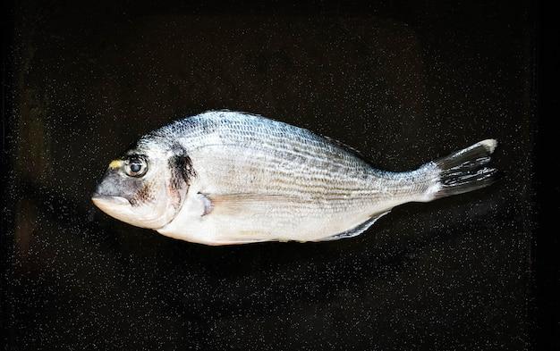 Świeże ryby orata nad czarnym kamieniem z warzywami