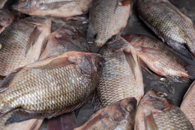 Świeże ryby umieszczone na lodzie sprzedawane na rynku.