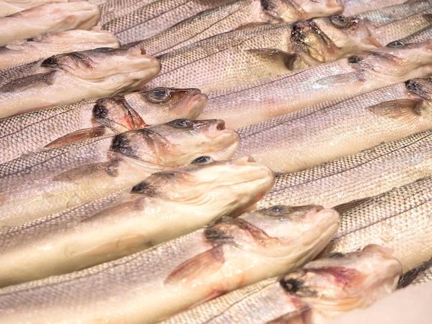 Świeże schłodzone ryby ułożone w rzędzie na ladzie sklepu. ryby posypane lodem dla zachowania świeżości