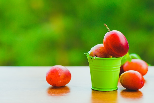 Świeże śliwki organiczne w małym wiaderku