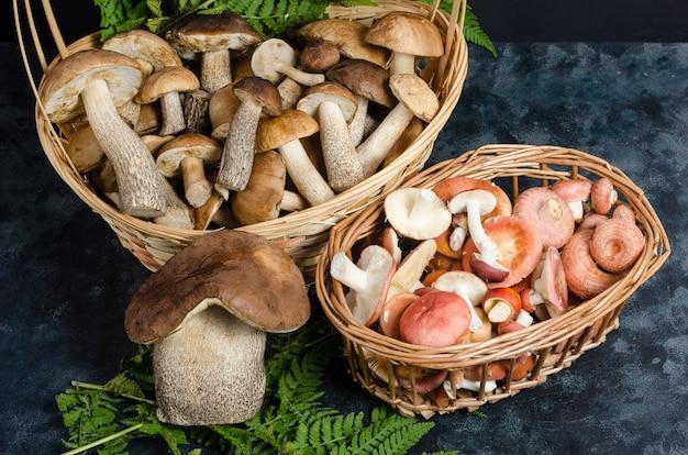Świeże, surowe, dzikie borowiki i borowiki jadalne w koszach na ciemnej powierzchni. jesienne zbieranie grzybów.