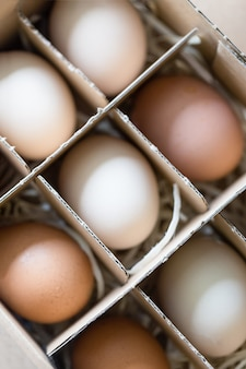 Świeże surowe jaja kurze białe i brązowe