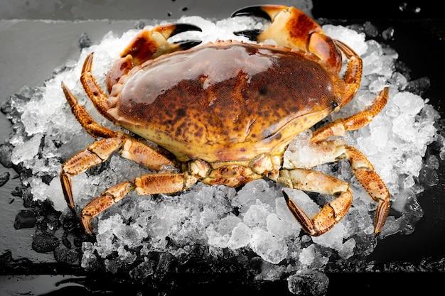 Świeże surowe kraby z florydy na sterty lodu na czarnej płycie kamiennej. świeże owoce morza na rynku