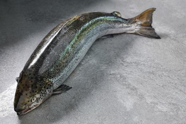 Świeże surowe ryby łosoś na stole