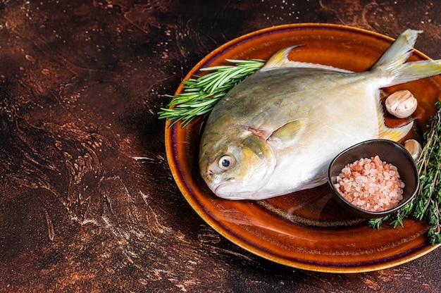 Świeże surowe ryby z florydy pompano na rustykalnym talerzu. ciemne tło. widok z góry. skopiuj miejsce.