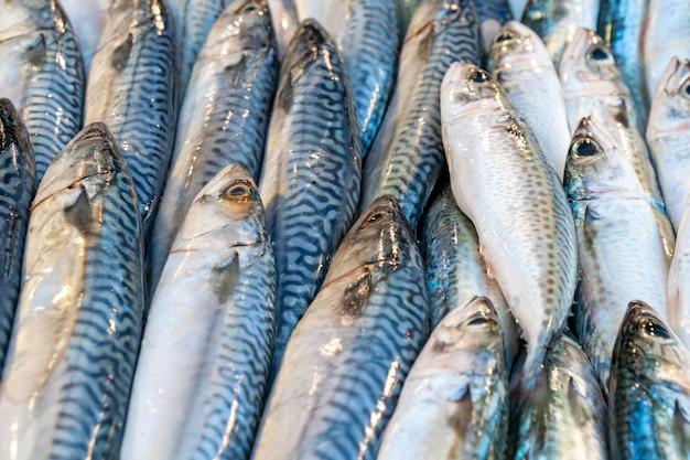 Świeże surowe ryby z makreli na rynku. jedzenie.