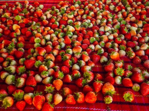 Świeże truskawki z gospodarstw naturalnych, eksport