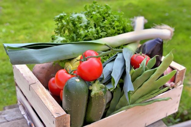 Świeże warzywa w skrzyni stawiają stół w ogrodzie