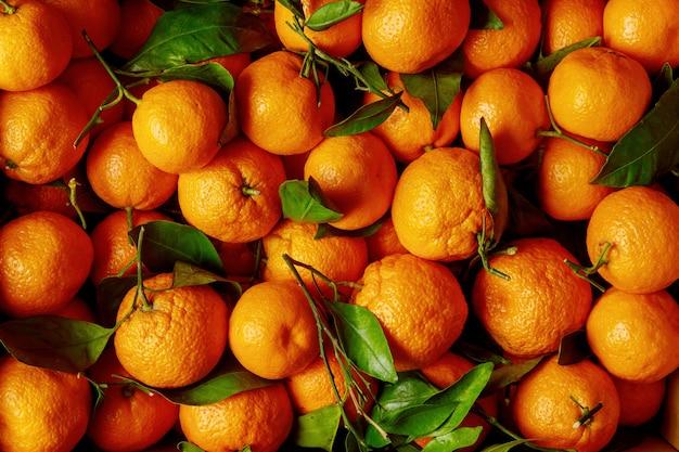 Świeże zbiory mandarynki, mandarynki z liśćmi