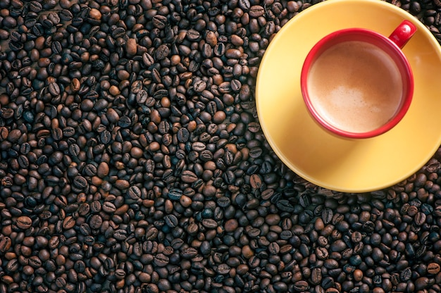 Świeże ziarna kawy na tle drewna