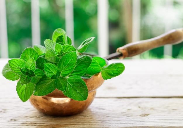 Świeże zielone gałązki organiczne mięty, mięty pieprzowej, pikantnych ziół, przypraw